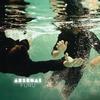 Cover of the album Furu