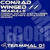 Cover of the album Seagulls - Single