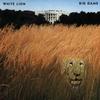 Couverture de l'album Big Game