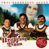 Couverture de l'album Zwoa rehbraune Augen