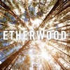 Cover of the album Etherwood