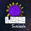 Cover of the album Sineisola