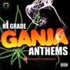 Couverture de l'album Hi Grade Ganja Anthems