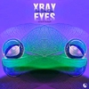 Cover of the album Xray Eyes - Single