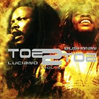 Cover of the track Toe to Toe Volume. 4: Luciano/ Bushman