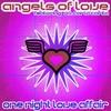 Couverture de l'album One Night Love Affair (Remixes)