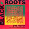 Couverture de l'album Dub Factor 1 - The Mad Professor Mixes