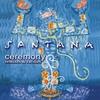 Couverture de l'album Ceremony: Remixes & Rarities