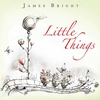 Couverture de l'album Little Things