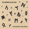 Cover of the album The Secret Like Crazy