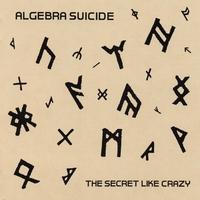 Couverture du titre The Secret Like Crazy