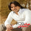 Cover of the album Bahaa Sultan 2013
