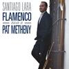 Cover of the album Flamenco Tribute to Pat Metheny