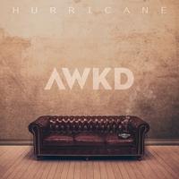 Couverture du titre Hurricane (feat. Blujia) - Single