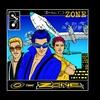 Couverture de l'album DiscO-Zone