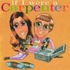 Couverture de l'album If I Were a Carpenter