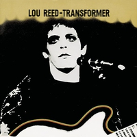 Cover of the track Transformer