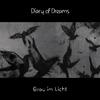 Couverture de l'album Grau im Licht
