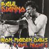 Couverture de l'album Iron Maiden Days & Evil Nights