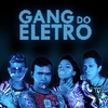 Cover of the album Gang do eletro
