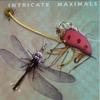 Couverture de l'album Intricate Maximals