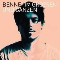 Cover of the track Im Großen und Ganzen