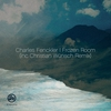 Cover of the album Frozen Room (Inc Christian Wunsch Remix) - Single