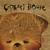 Cover of the album Intriguer (Deluxe Edition)