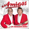 Cover of the album Amigos - Im Herzen jung