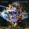 Couverture de l'album Listening Tree