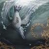 Couverture de l'album Worm Ouroboros