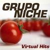Couverture de l'album Virtual Hits