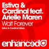 Couverture de l'album Wait Forever (feat. Arielle Maren) - Single