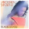 Couverture de l'album Traces of You