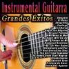 Couverture de l'album Instrumental Guitarra: Grandes Éxitos