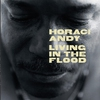 Couverture de l'album Living in the Flood