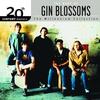 Couverture de l'album 20th Century Masters - The Millennium Collection: Gin Blossoms