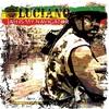 Couverture de l'album Jah Is My Navigator