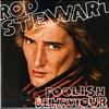 Couverture de l'album Foolish Behaviour (Extended Version)