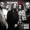 Cover of the album The Essential Korn