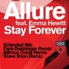 Couverture de l'album Stay Forever (feat. Emma Hewitt) [Remixes]