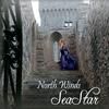 Couverture de l'album North Winds
