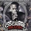 Couverture de l'album Cocaine Muzik 8