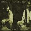 Couverture de l'album Thee, Stranded Horse & Ballaké Sissoko