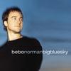 Couverture de l'album Big Blue Sky