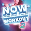 Cover of the album NOW That's What I Call a Workout 2