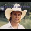 Couverture de l'album Ricky Van Shelton - 16 Biggest Hits