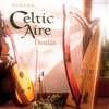 Cover of the album Celtic Aire