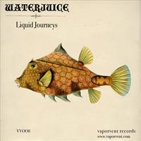 Couverture du titre Liquid Journeys