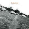 Couverture de l'album The Early Garage Years